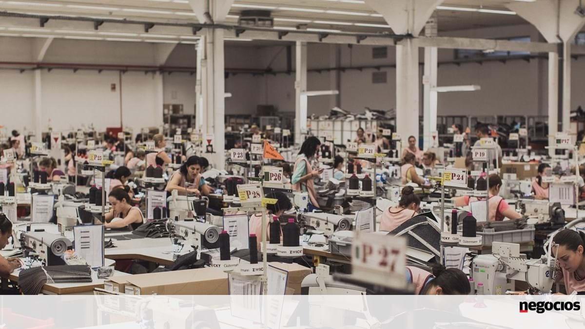 Empresas Em Arcos De Valdevez coindu vai criar mais 200 empregos em arcos de valdevez